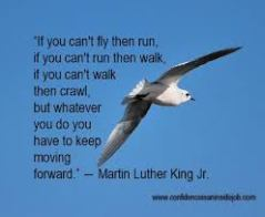 fly quote